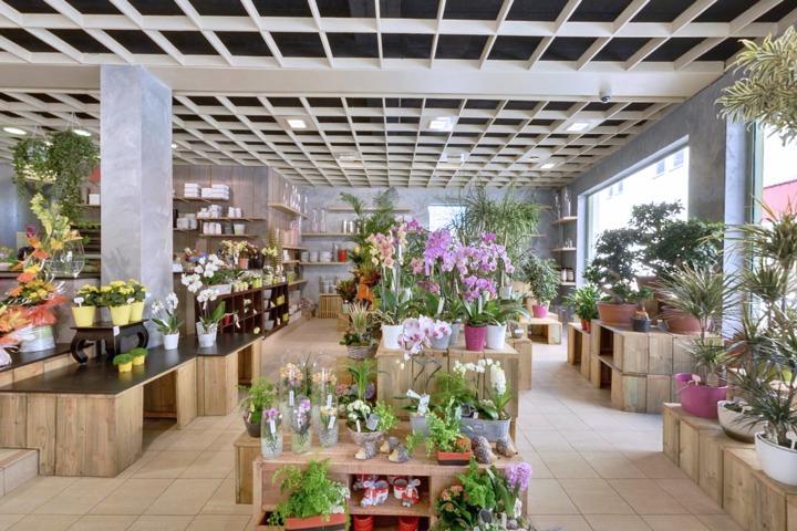 Fleuriste à Clouange, depuis 1954 à votre service.