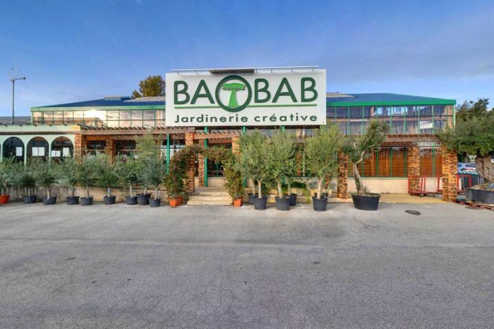 jardinerie animalerie d coration baobab de salon de